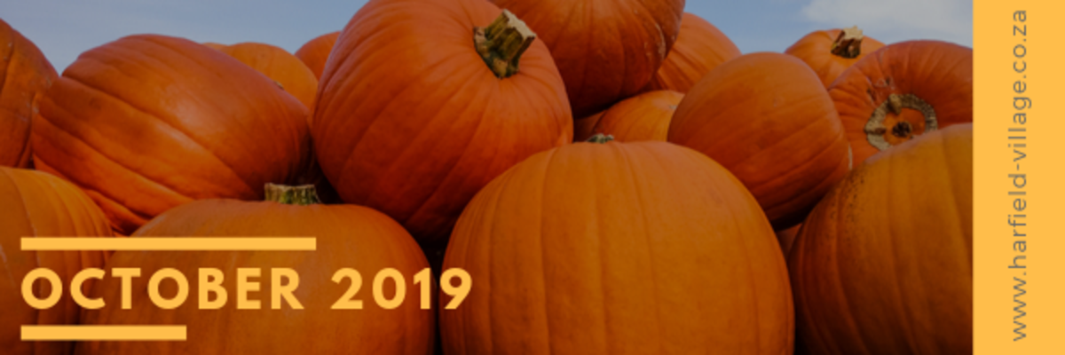 "As summer approaches one tends to think of things to do ""outdoor"".  Loads of fun is to be had in nature in and around our beautiful city. It is also ""pumpkin month"", and what's not to like about pumpkins…"