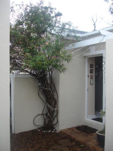 Property For Sale in Kenilworth Park, Cape Town 4